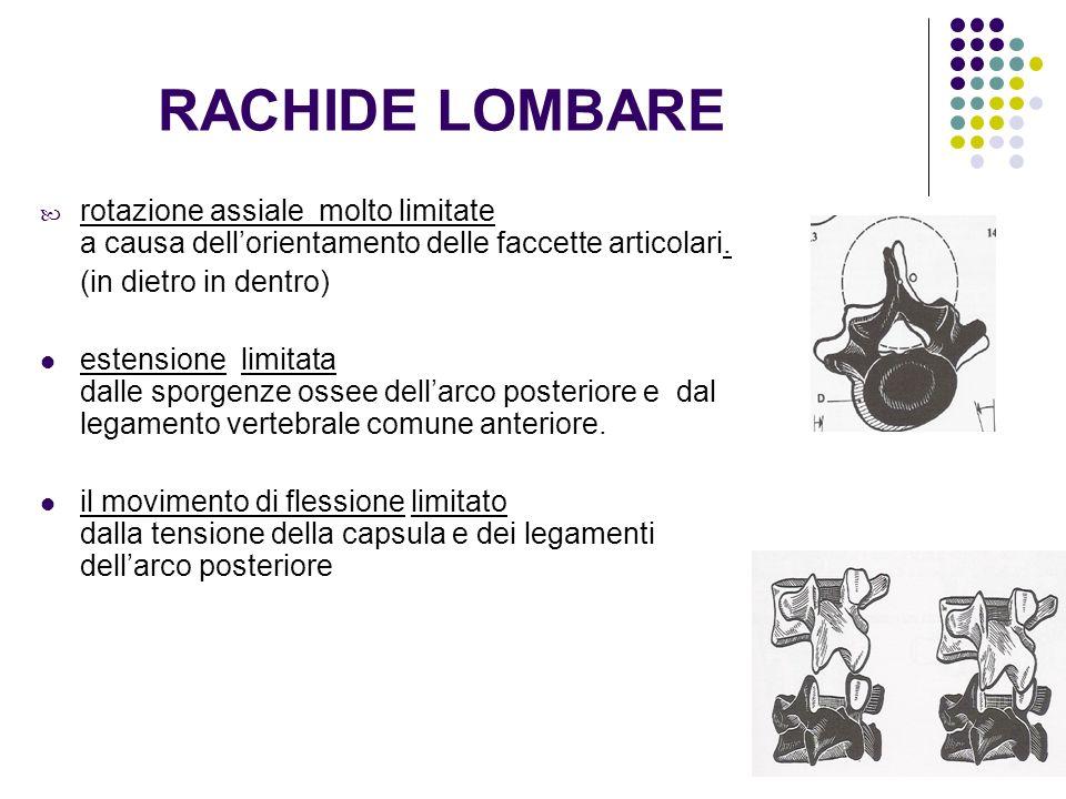 RACHIDE LOMBARE rotazione assiale molto limitate a causa dell'orientamento delle faccette articolari.