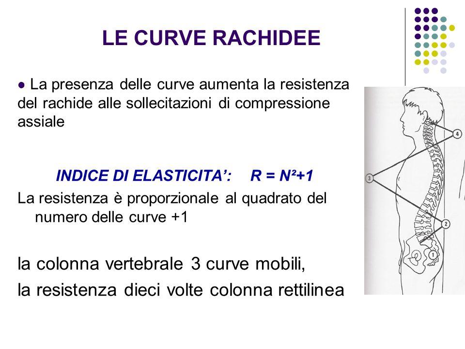 INDICE DI ELASTICITA': R = N²+1