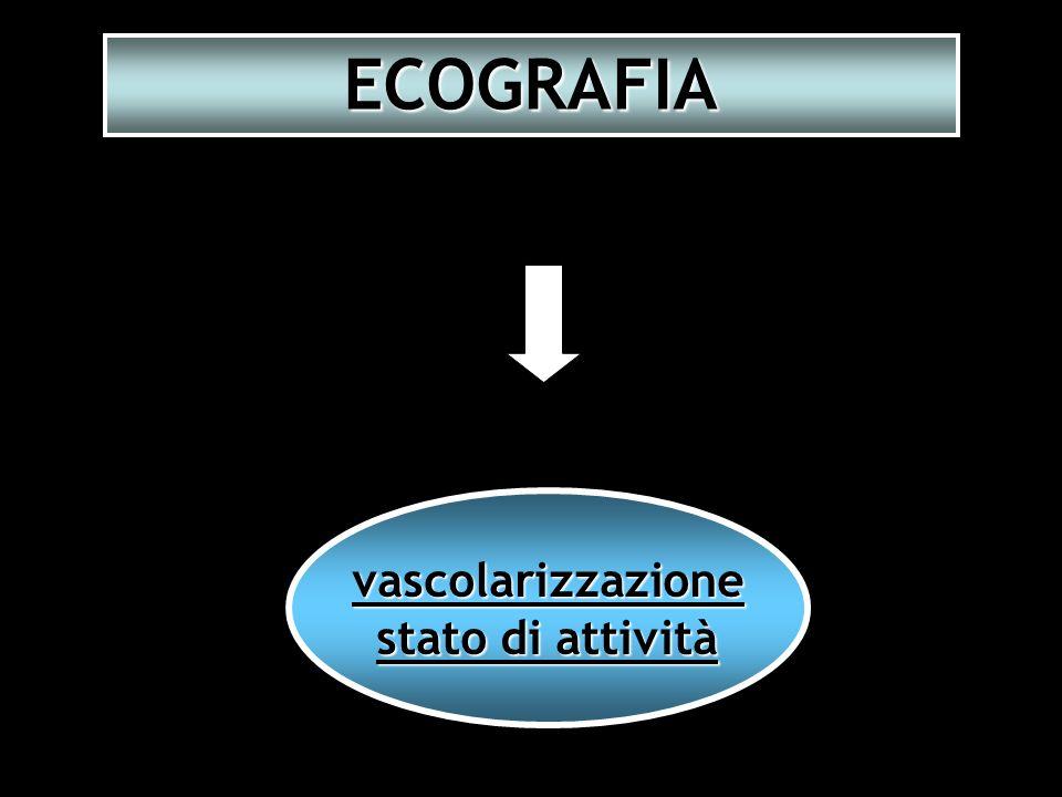 ECOGRAFIA vascolarizzazione stato di attività