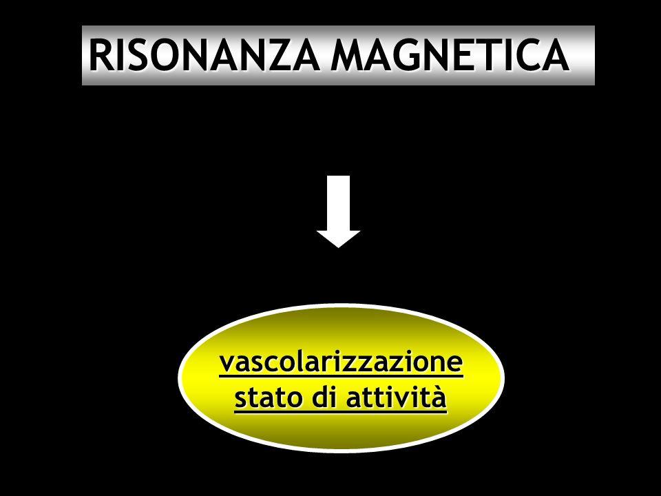 RISONANZA MAGNETICA vascolarizzazione stato di attività 27