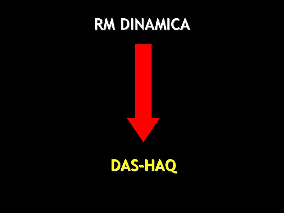 RM DINAMICA DAS-HAQ 36