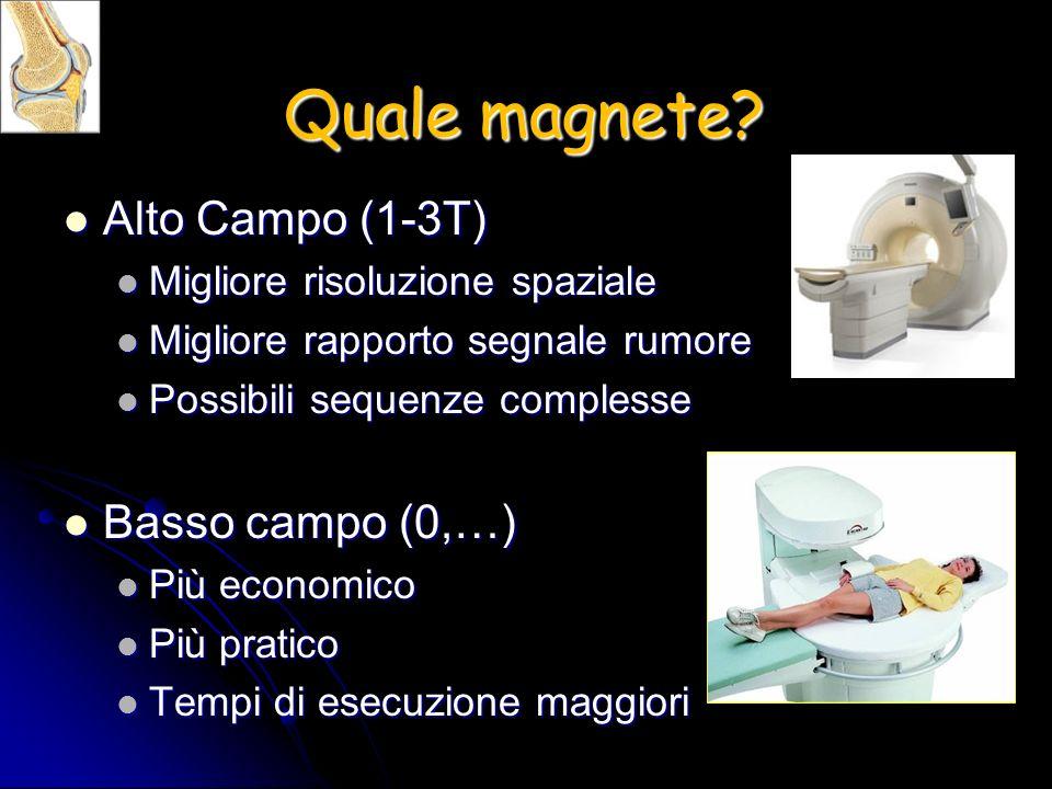 Quale magnete Alto Campo (1-3T) Basso campo (0,…)