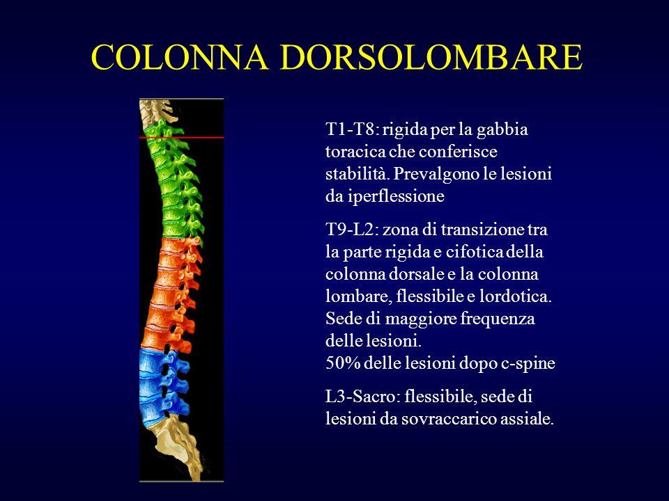 COLONNA DORSOLOMBARE T1-T8: rigida per la gabbia toracica che conferisce stabilità. Prevalgono le lesioni da iperflessione.