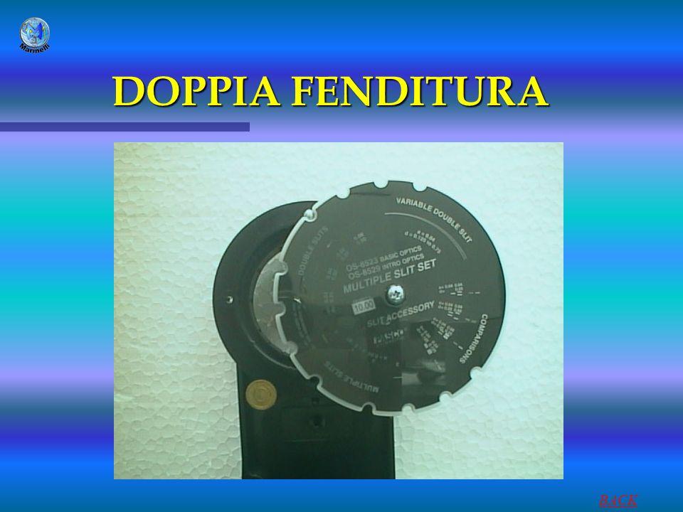 DOPPIA FENDITURA BACK