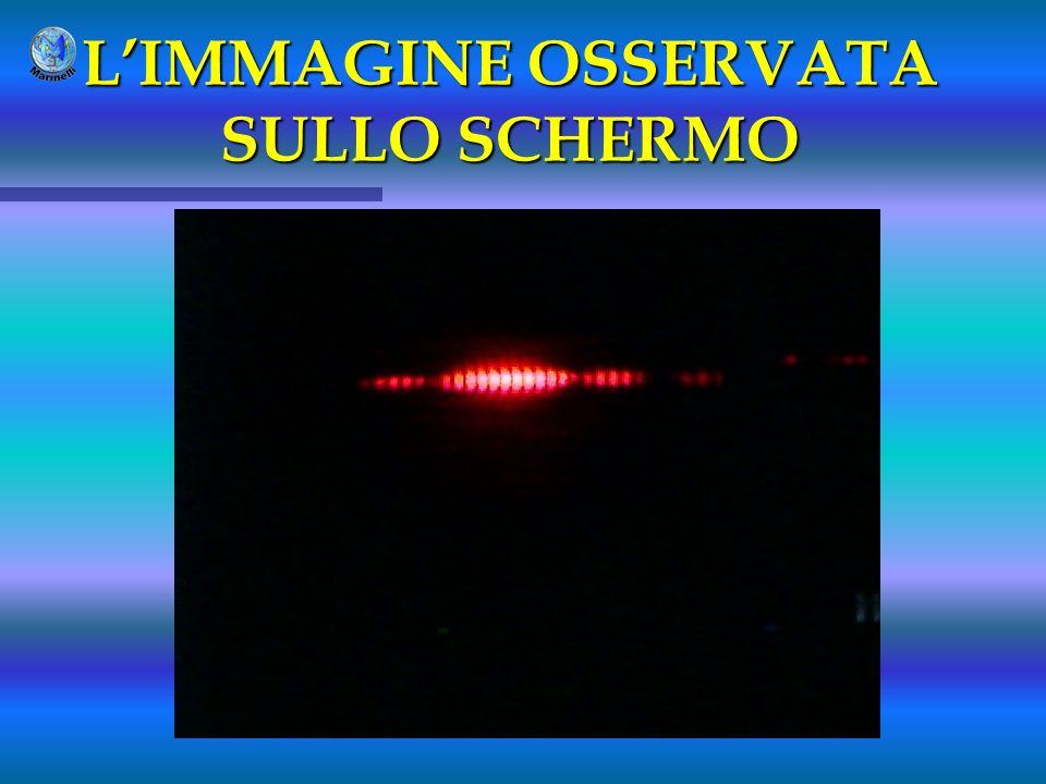 L'IMMAGINE OSSERVATA SULLO SCHERMO