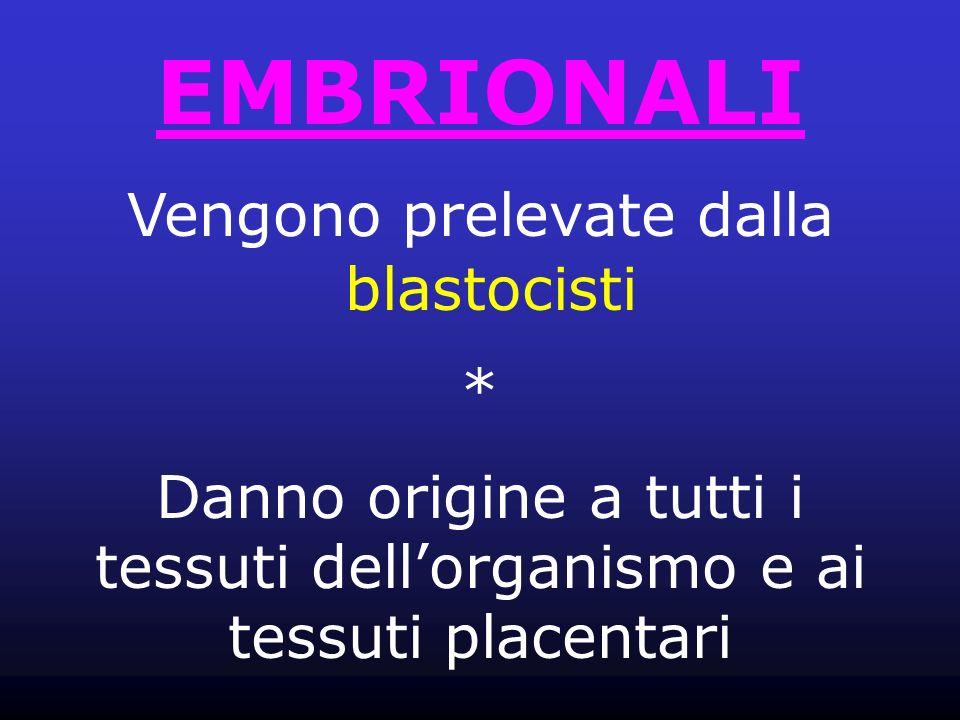 EMBRIONALI Vengono prelevate dalla blastocisti *