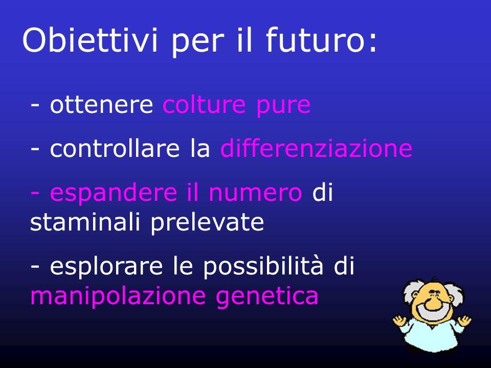 Obiettivi per il futuro: