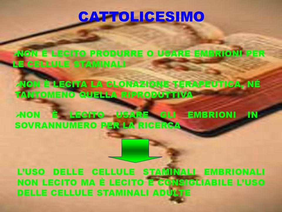 CATTOLICESIMO NON È LECITO PRODURRE O USARE EMBRIONI PER LE CELLULE STAMINALI.