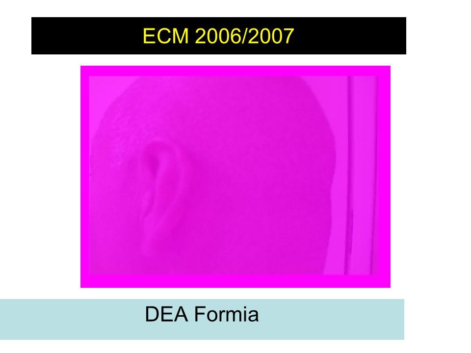 ECM 2006/2007 Non c'è turno in cui non si affronti il dilemma di cosa fare con il paziente che ha subito un trauma cranico lieve.