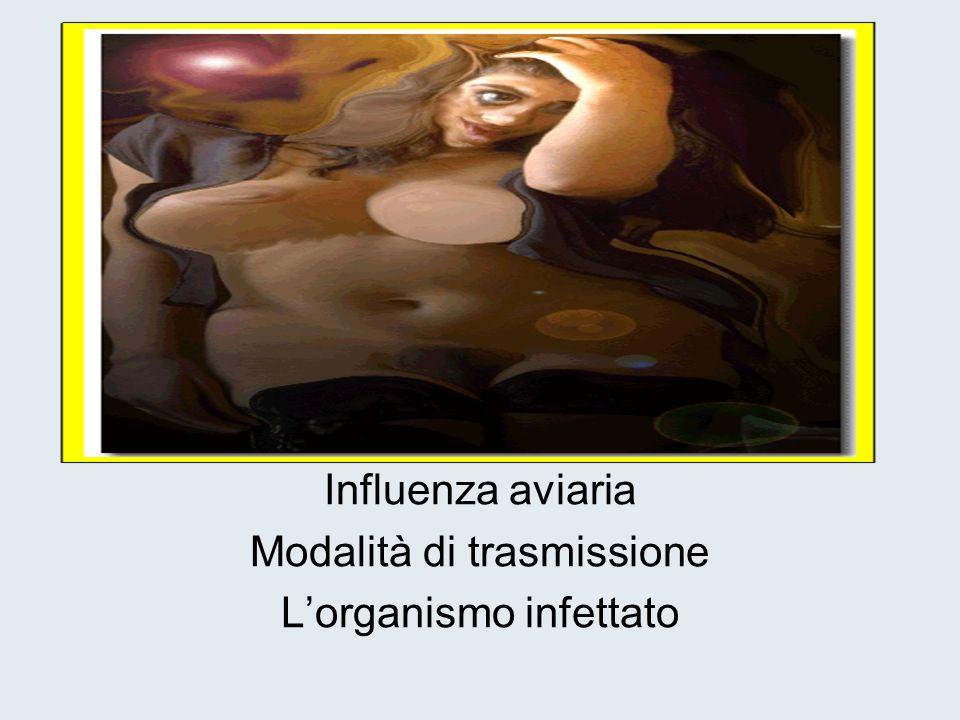Influenza aviaria Modalità di trasmissione L'organismo infettato
