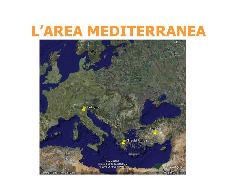 L'AREA MEDITERRANEA