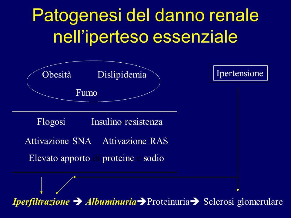 Patogenesi del danno renale nell'iperteso essenziale