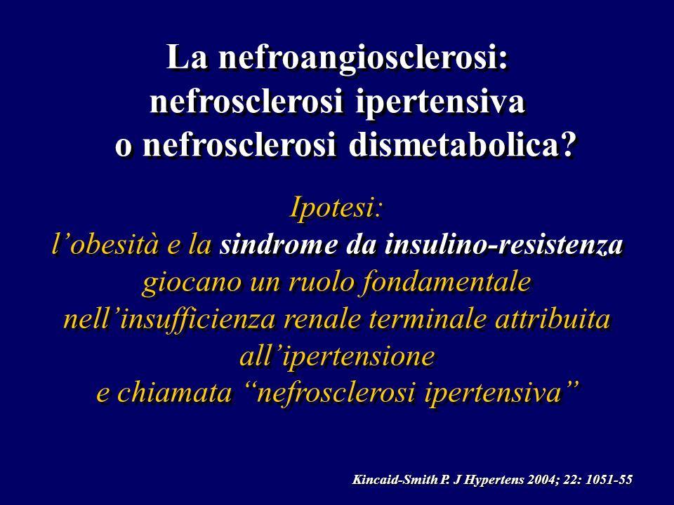 Ipotesi: l'obesità e la sindrome da insulino-resistenza