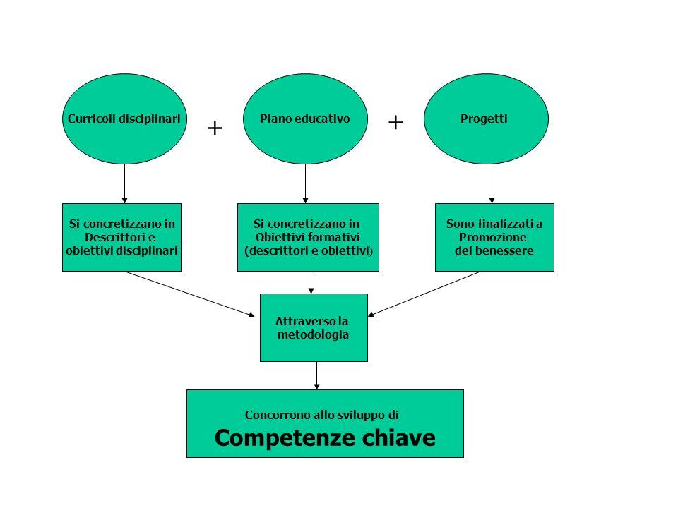 + + Competenze chiave Curricoli disciplinari Piano educativo Progetti