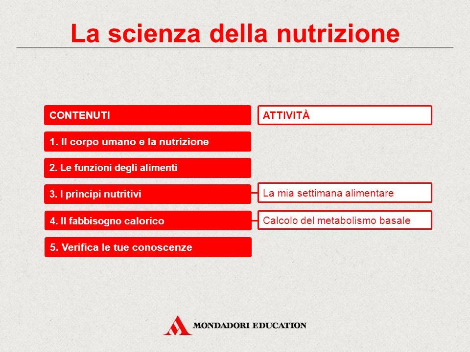 La scienza della nutrizione