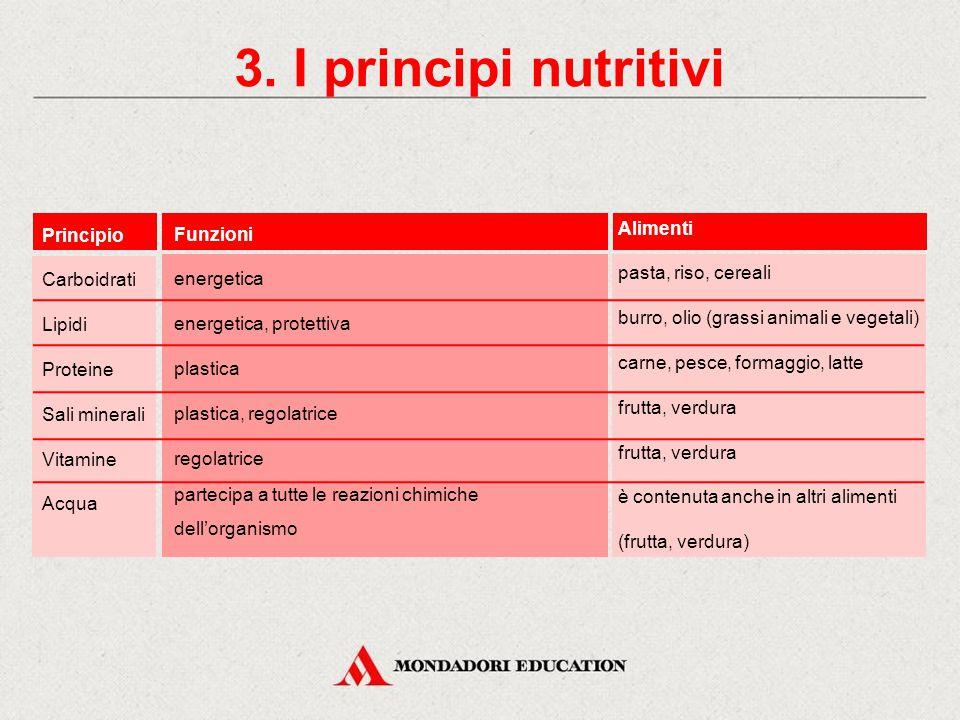 3. I principi nutritivi Alimenti Principio Funzioni