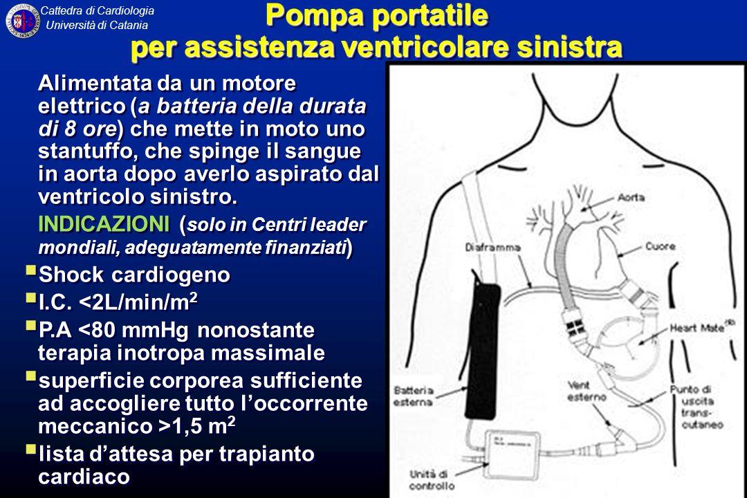 Pompa portatile per assistenza ventricolare sinistra