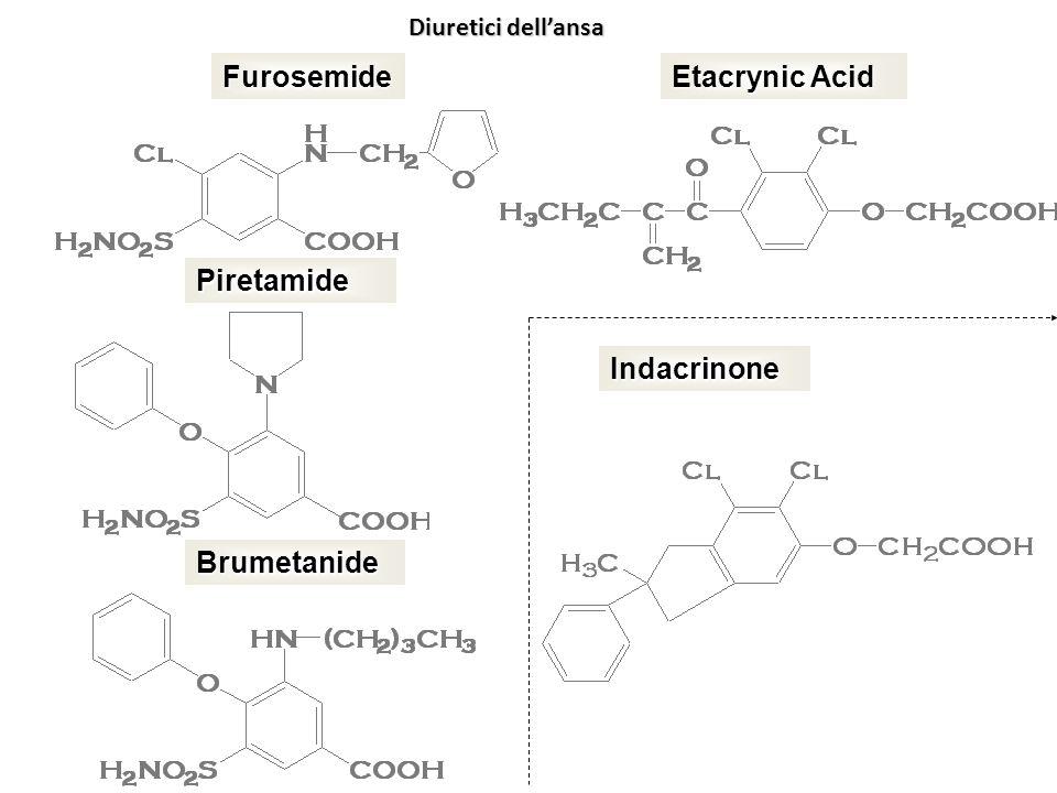 Furosemide Etacrynic Acid Piretamide Indacrinone Brumetanide