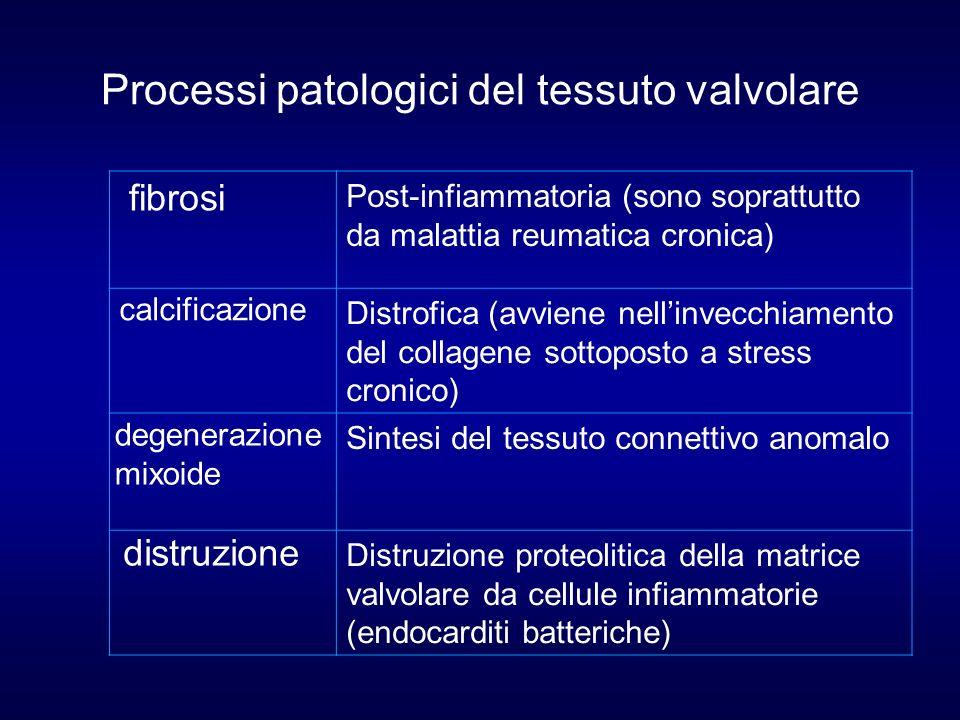 Processi patologici del tessuto valvolare