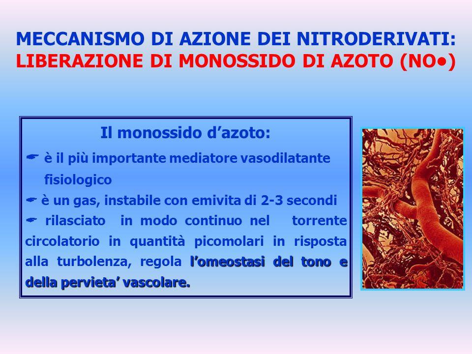 MECCANISMO DI AZIONE DEI NITRODERIVATI: LIBERAZIONE DI MONOSSIDO DI AZOTO (NO•)