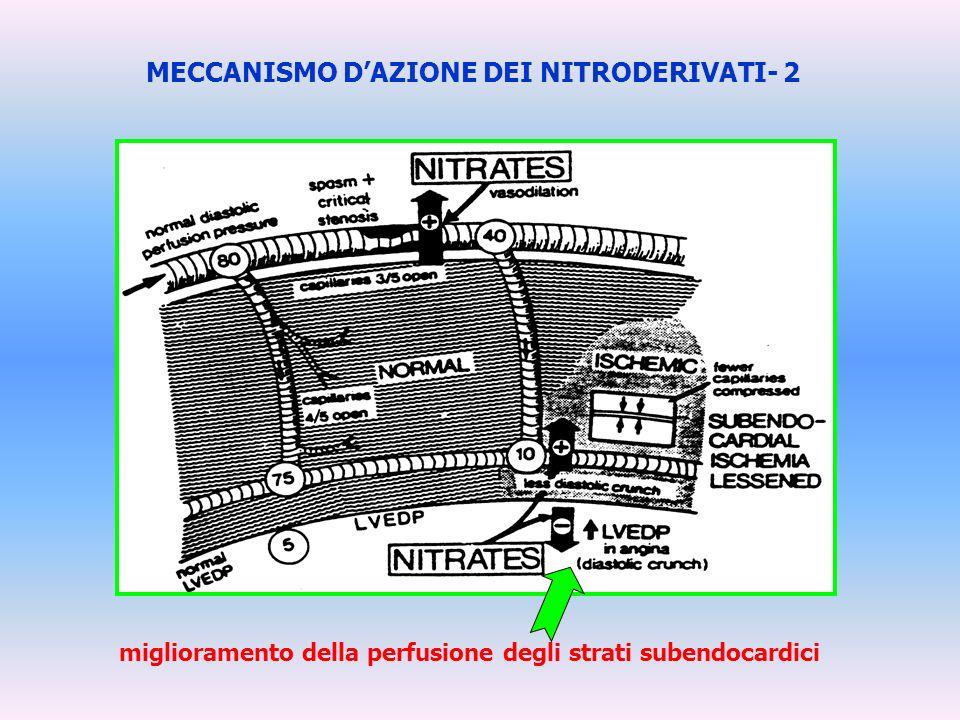 MECCANISMO D'AZIONE DEI NITRODERIVATI- 2