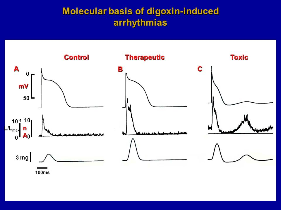 Molecular basis of digoxin-induced arrhythmias