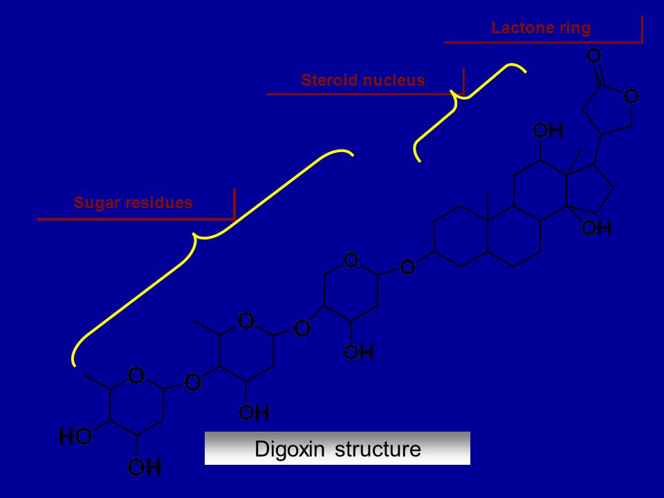 Lactone ring Steroid nucleus Sugar residues Digoxin structure