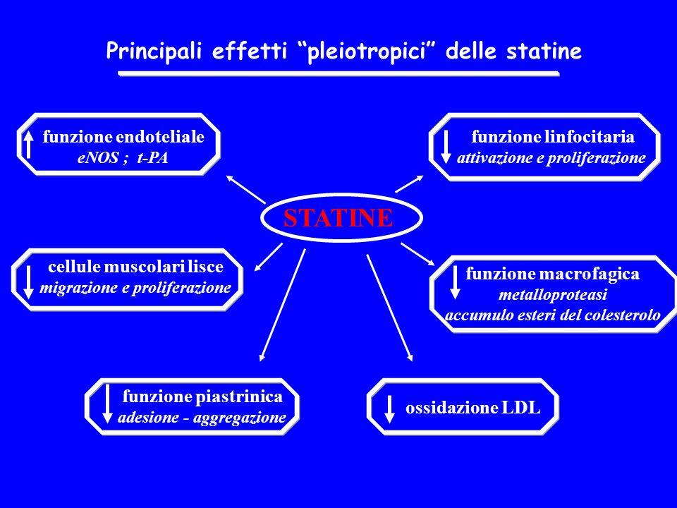STATINE Principali effetti pleiotropici delle statine