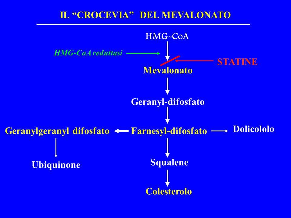 IL CROCEVIA DEL MEVALONATO