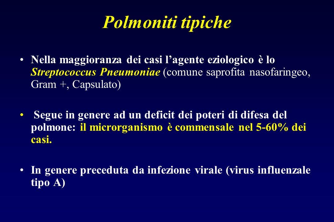 Polmoniti tipiche Nella maggioranza dei casi l'agente eziologico è lo Streptococcus Pneumoniae (comune saprofita nasofaringeo, Gram +, Capsulato)