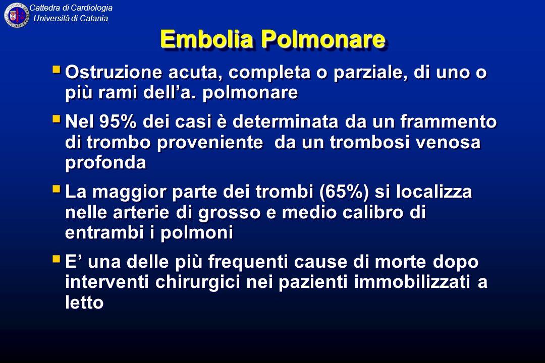 Embolia Polmonare Ostruzione acuta, completa o parziale, di uno o più rami dell'a. polmonare.