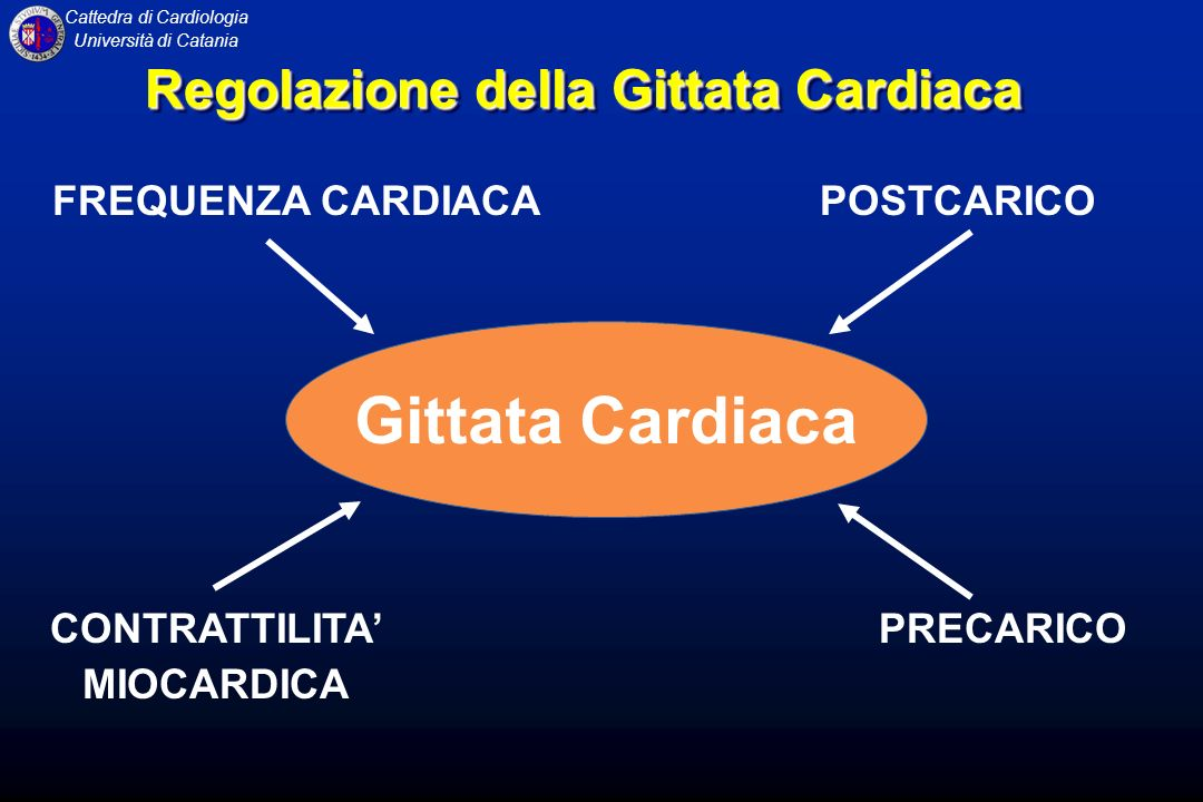 Gittata Cardiaca Regolazione della Gittata Cardiaca FREQUENZA CARDIACA