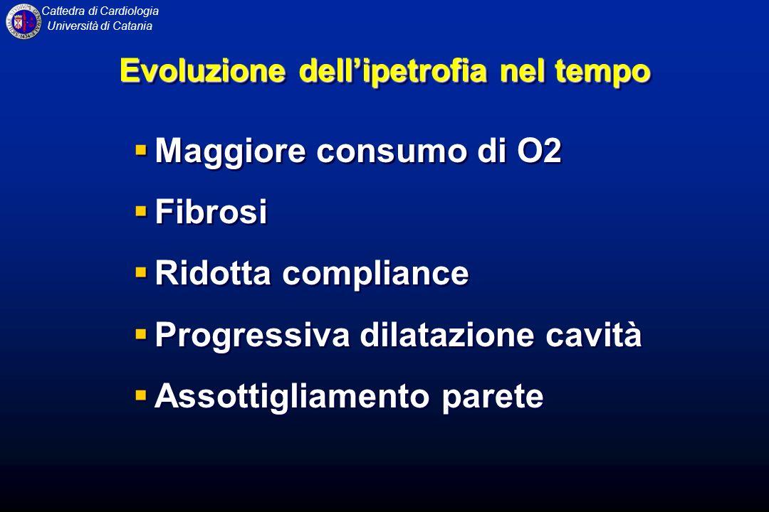 Evoluzione dell'ipetrofia nel tempo