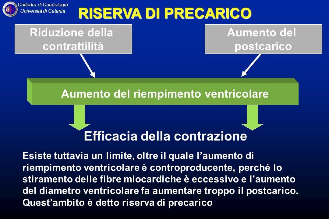 Aumento del riempimento ventricolare Efficacia della contrazione