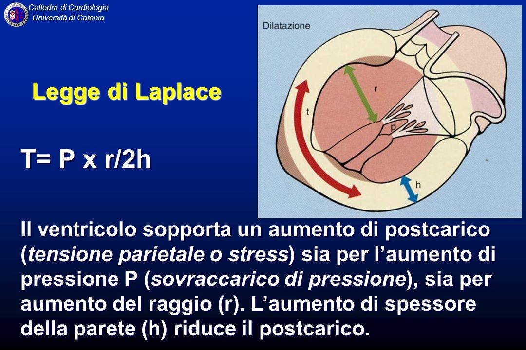 T= P x r/2h Legge di Laplace