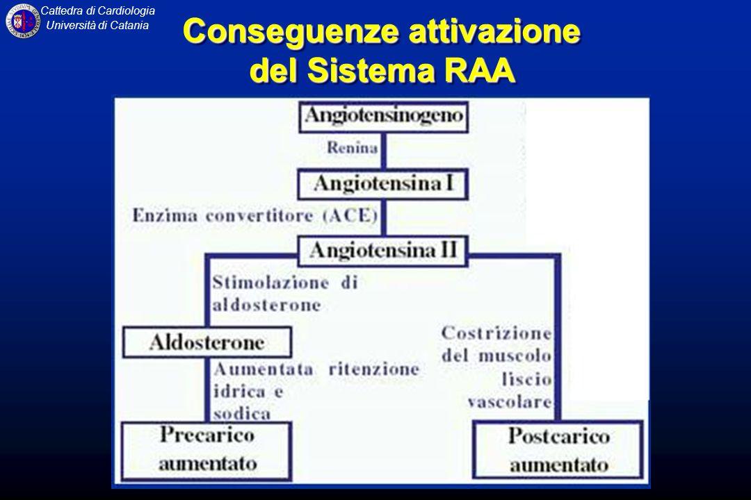 Conseguenze attivazione del Sistema RAA