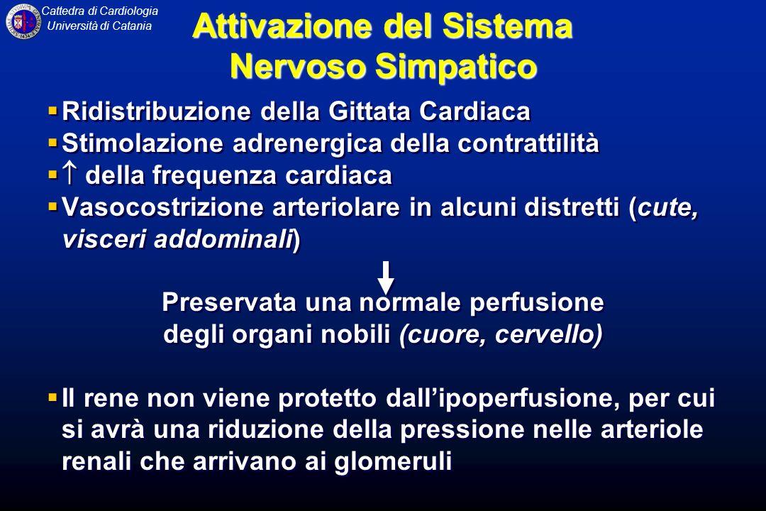 Attivazione del Sistema Nervoso Simpatico