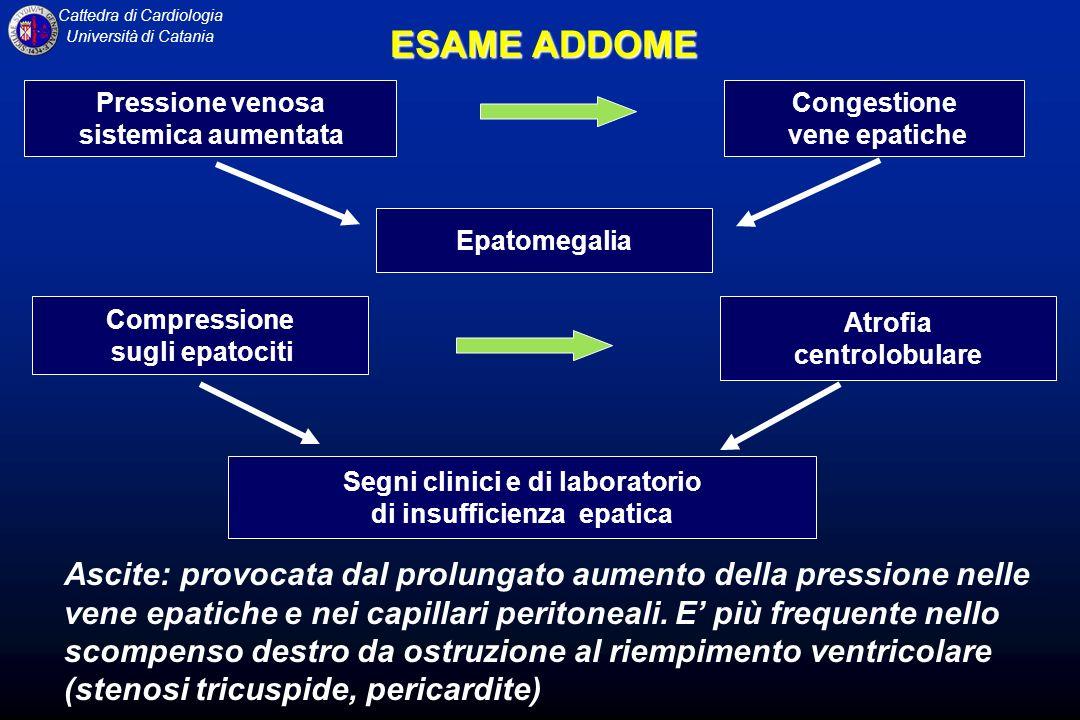 Segni clinici e di laboratorio di insufficienza epatica
