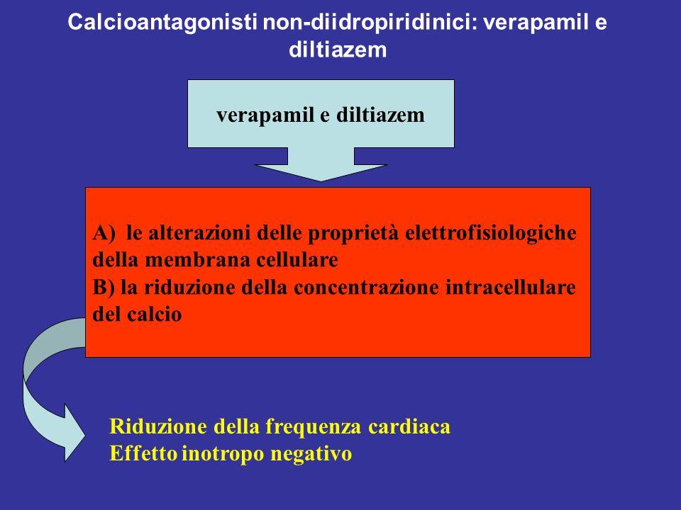 Calcioantagonisti non-diidropiridinici: verapamil e diltiazem