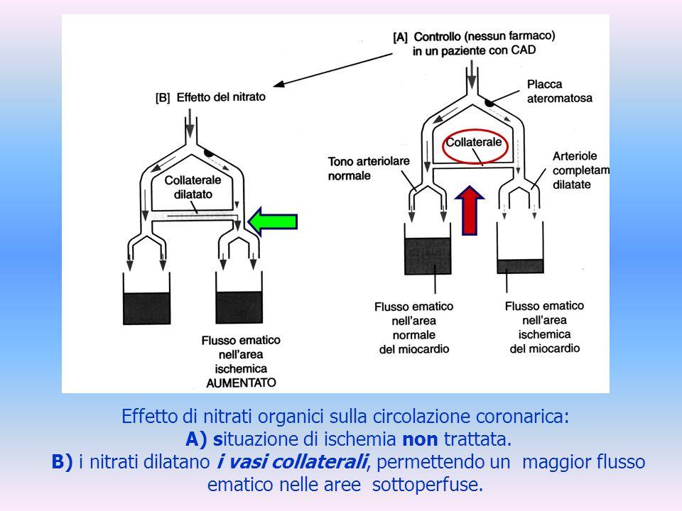 Effetto di nitrati organici sulla circolazione coronarica: