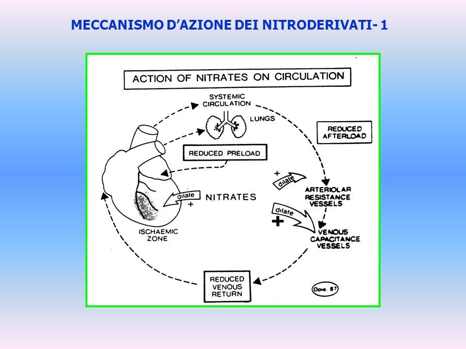 MECCANISMO D'AZIONE DEI NITRODERIVATI- 1