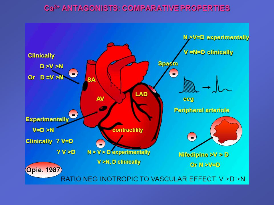 Ca2+ ANTAGONISTS: COMPARATIVE PROPERTIES