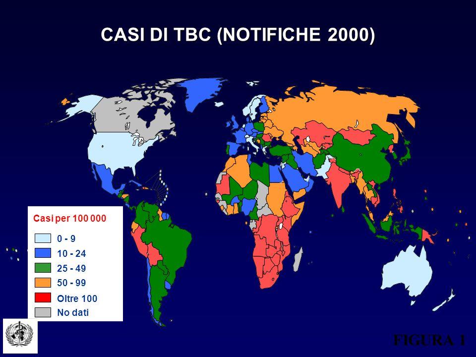 CASI DI TBC (NOTIFICHE 2000)