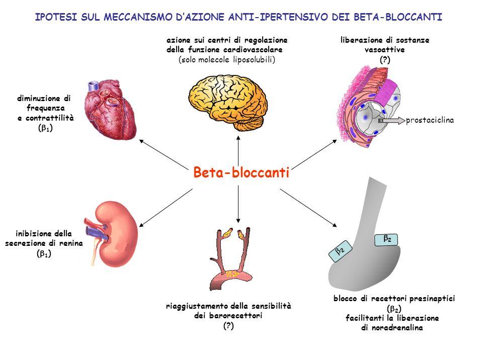 IPOTESI SUL MECCANISMO D'AZIONE ANTI-IPERTENSIVO DEI BETA-BLOCCANTI