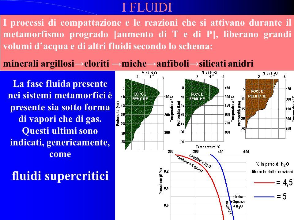 I FLUIDI fluidi supercritici