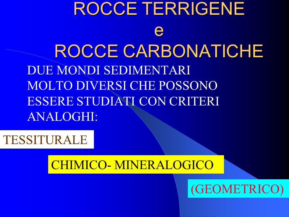 ROCCE TERRIGENE e ROCCE CARBONATICHE
