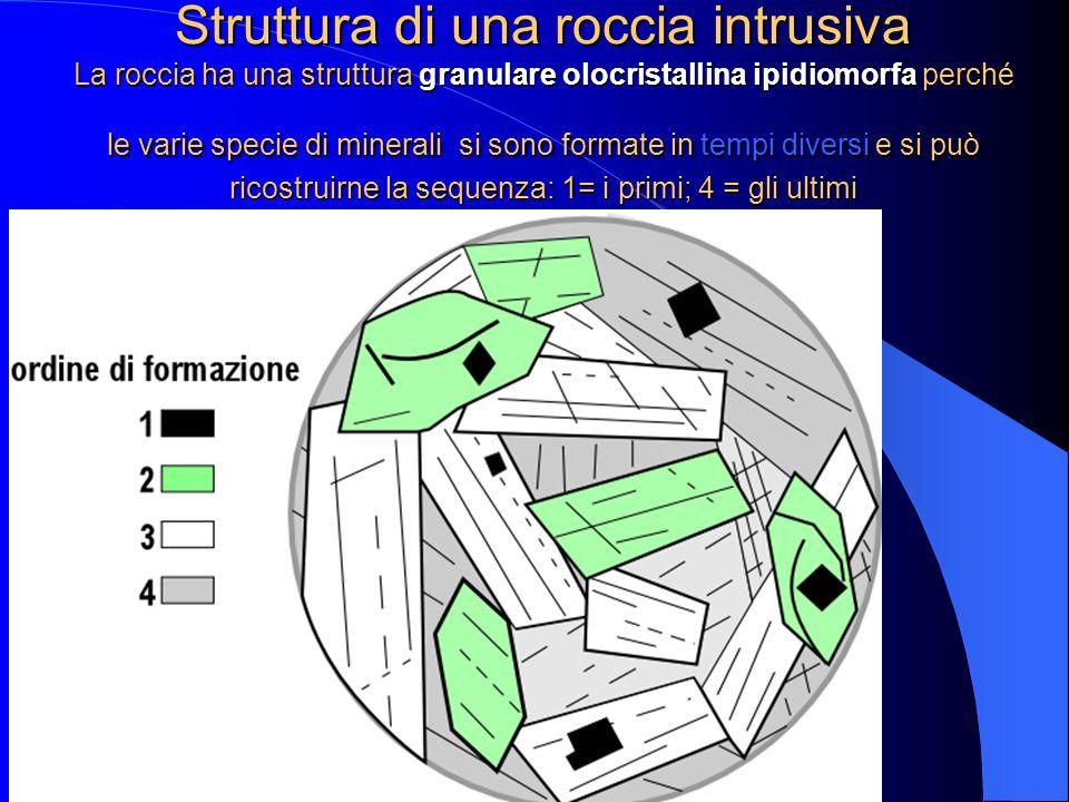 Struttura di una roccia intrusiva La roccia ha una struttura granulare olocristallina ipidiomorfa perché le varie specie di minerali si sono formate in tempi diversi e si può ricostruirne la sequenza: 1= i primi; 4 = gli ultimi