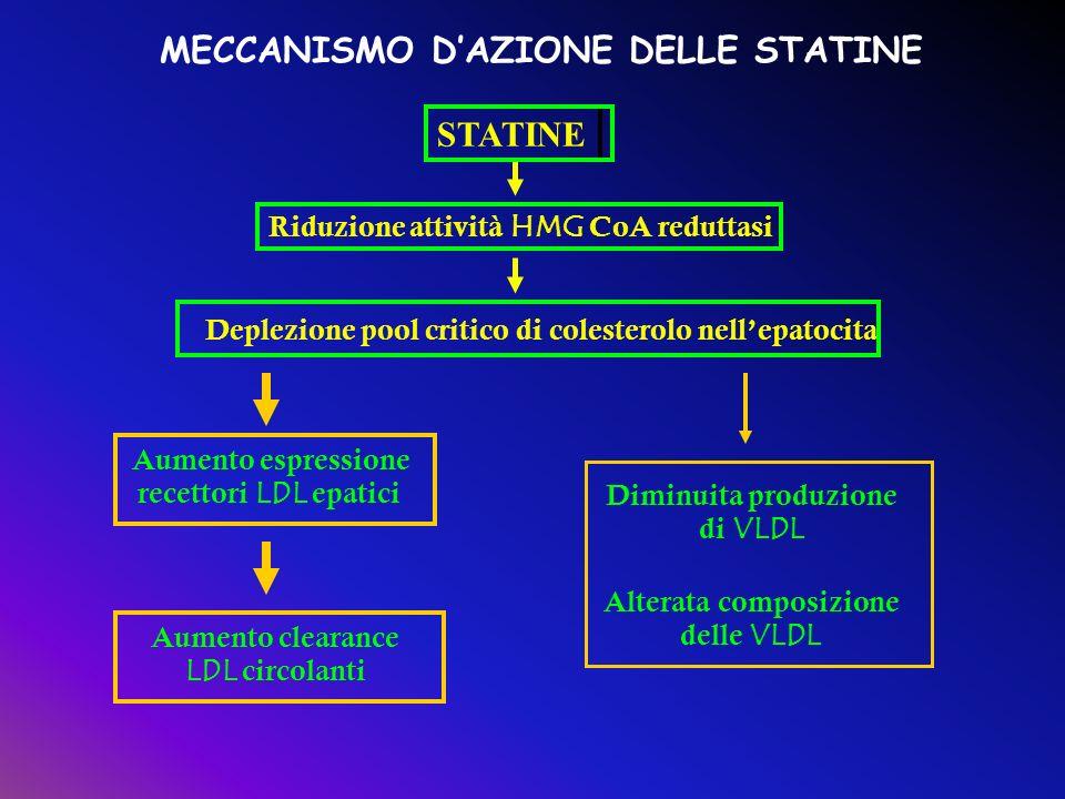 MECCANISMO D'AZIONE DELLE STATINE