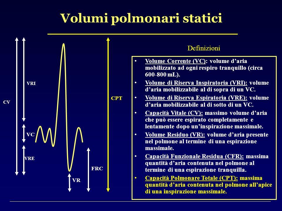 Volumi polmonari statici