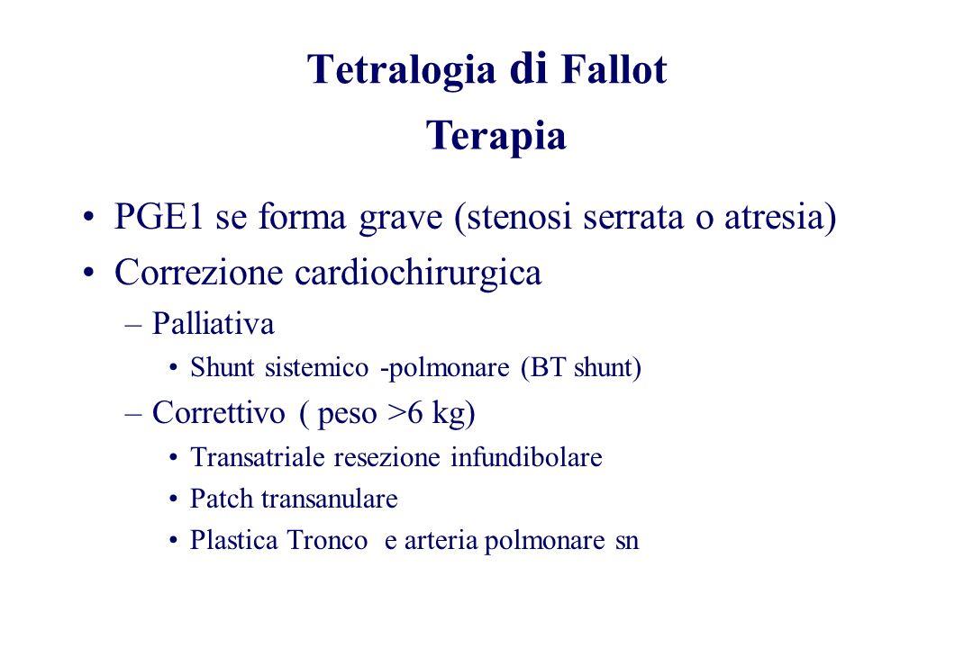 Tetralogia di Fallot Terapia